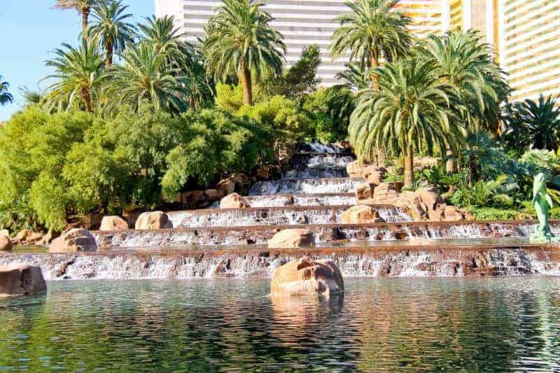 hotel pond and fountain management