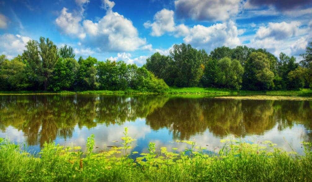 retention pond cleaning services