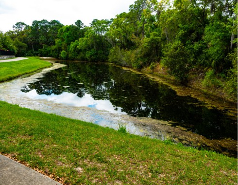 non-maintained retention pond