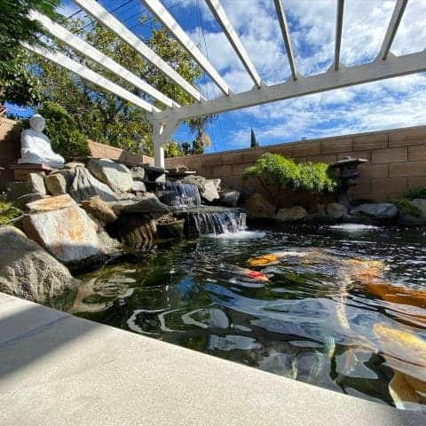 Westminster Koi Pond Construction