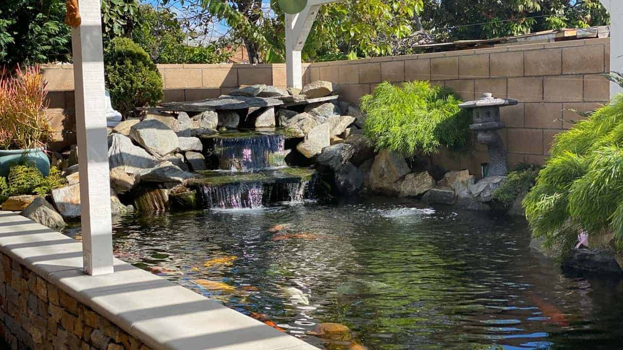 pond contractor wesminster ca